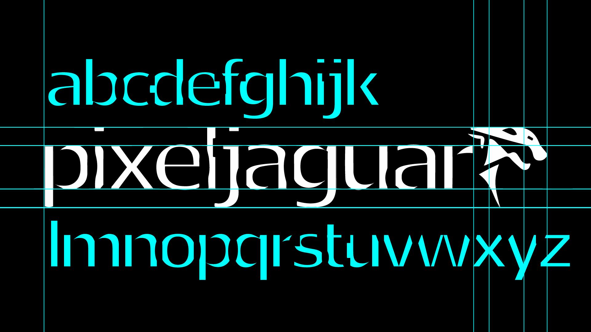 front-logo-graphic-design-studio-pixeljaguar-20-by-elj
